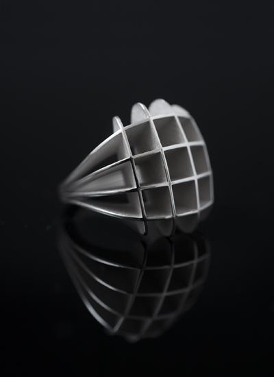 Spline Ring